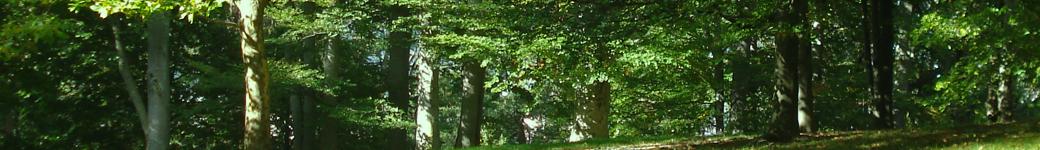 Offene Gärten Bochum